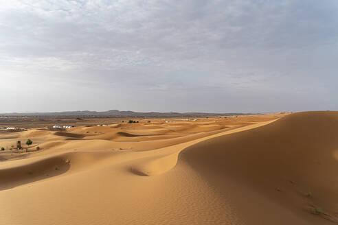 Sand dunes in Sahara Desert, Merzouga, Morocco - AFVF05556