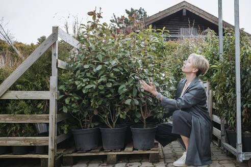 Woman looking at plant pots at graden center - VYF00040
