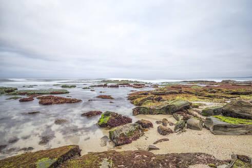 Coastal morning on a rocky beach and reef area. La Jolla, CA. - CAVF76170