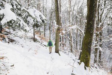 Germany, North Rhine-Westphalia, Lone backpacker hiking in snow-covered forest in High Fens - Eifel Nature Park - GWF06509
