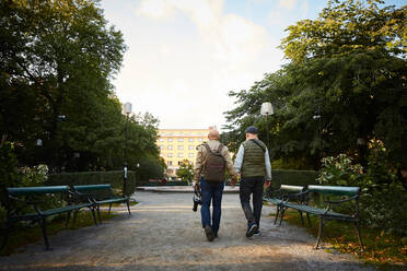 Rear view of senior gay couple holding hands walking at park in city - MASF17150