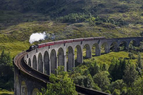 View Of Steam Train On Bridge - EYF00808
