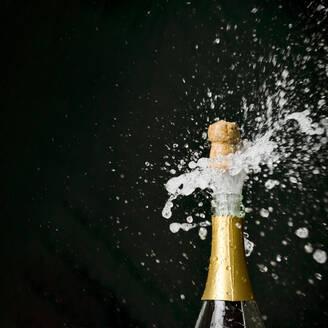 Champagne Exploding From Bottle Against Black Background - EYF01012