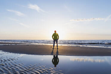 Rear view of senior man standing on shore at beach during sunset, North Sea Coast, Flanders, Belgium - GWF06541
