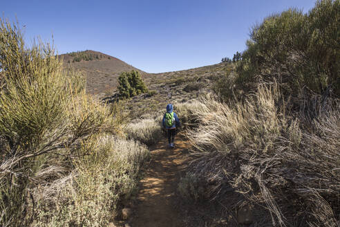 Rear view of a boy trekking in the Arenas Negras area, Teide National Park, Tenerife - IHF00288