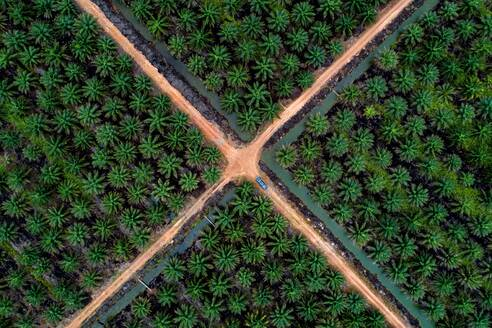 High Angle View Of Agricultural Field - EYF01509