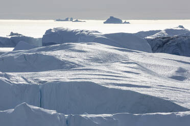 Sunny white icebergs Greenland - HOXF05810