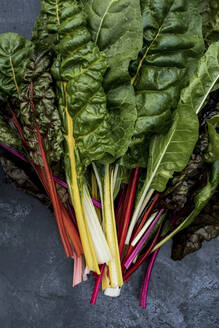 High angle close up of a bunch of freshly picked Swiss rainbow chard on grey background. - MINF14429