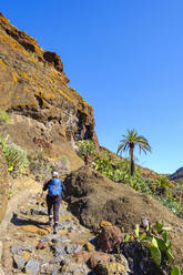 Spain, Province of Santa Cruz de Tenerife, SanSebastiandeLa Gomera, Rear view of senior backpacker hiking along rocky hillside at Alto de Tacalcuse - SIEF09671