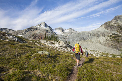 Rear view of backpackers hiking through alpine meadow below mountains. - CAVF77947