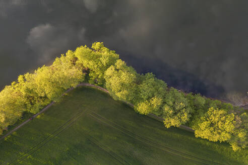 Germany, Brandenburg, Drone view of countryside field and line of lakeshore trees - ASCF01218