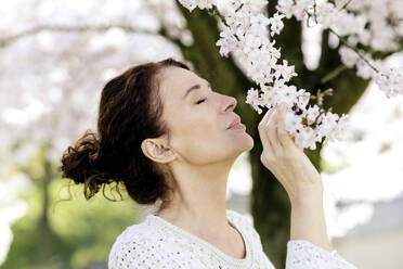 Mature woman with eyes closed smelling blossoms of tree - FLLF00444