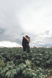 Young couple with transparent umbrella standing in a field hugging each other, Alboraya, Spain - AMAF00023