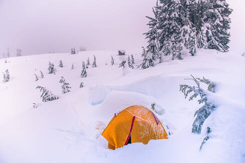 High angle view of orange tent pitched in a wintry landscape. - ISF24016