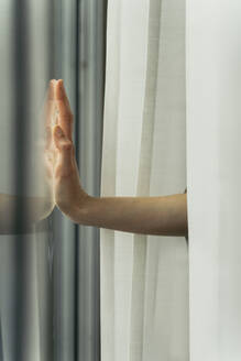 Hand of a woman touching windowpane - AFVF05959