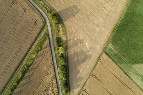 Germany, Bavaria, Drone view of country road cutting through yellow countryside fields in summer - RUEF02720