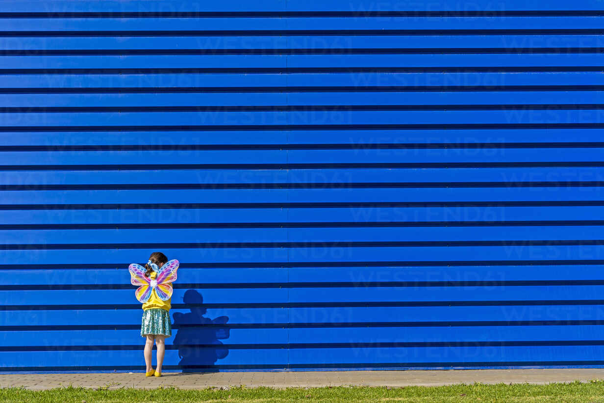 Back view of little girl with colourful butterfly wings standing in front of blue background - ERRF03258 - Eloisa Ramos/Westend61