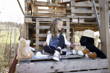 Girl playing with her teddy bears at tree house - HMEF00879