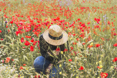 Young woman crouching in poppy field - FVSF00099