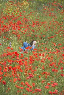 Young woman lying in poppy field - FVSF00105