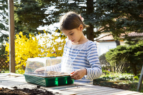 Girl covering her little greenhouse - LVF08797