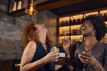 Two cheerful women socializing in a bar - ZEDF03312