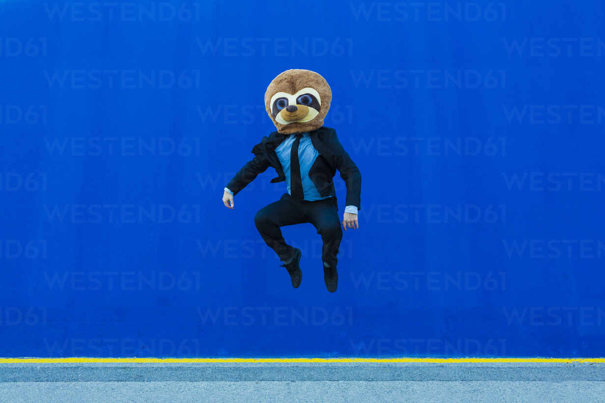 Businessman in black suit with meerkat mask jumping in the air in front of blue wall - XLGF00042 - Xavier Lorenzo/Westend61