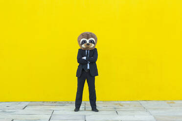 Portrait of businessman in black suit with meerkat mask standing in front of yellow wall - XLGF00054