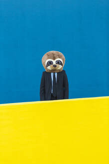 Portrait of businessman in black suit with meerkat mask standing behind yellow wall in front of blue background - XLGF00057