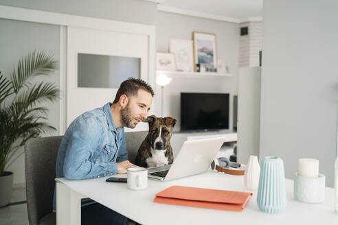 Man sitting by dog while working from home during coronavirus pandemic outbreak, Almeria, Spain, Europe - MPPF00850