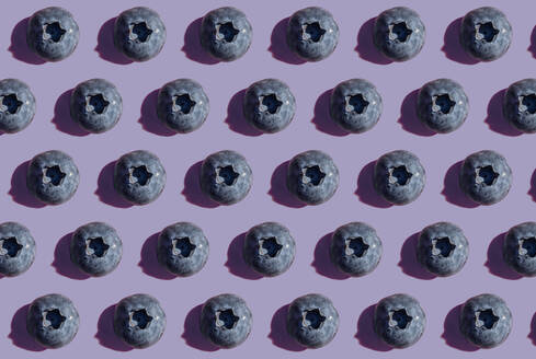 Blueberries in a row, pattern on purple background - GEMF03590