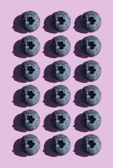 Blueberries in a row, pattern on purple background - GEMF03593