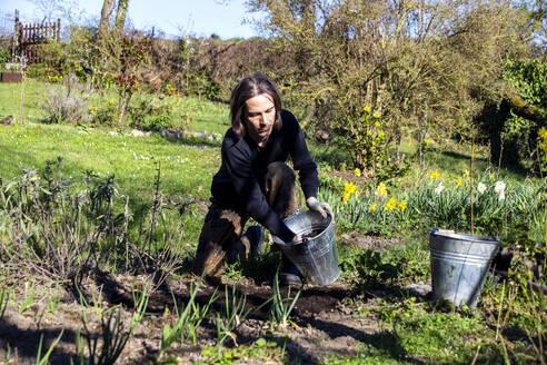 Man working in organic garden during springtime - NDF01049