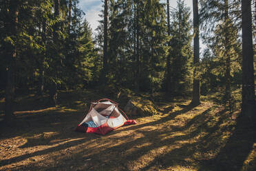 Tent in the woods, with a person sleeping inside in a sleeping bag - GUSF03689