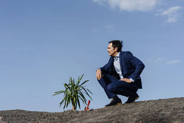 Mature businessman with a plant crouching on a disused mine tip - JOSEF00411