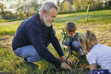 Smiling mature man planting tree with grandchildren at garden - ZEDF03353