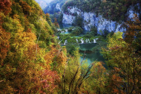 Croatia, Scenic view of lake surrounded by autumn forest in Plitvice Lakes National Park - ABOF00520