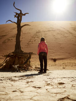 Woman and a tree in the desert, Deadvlei, Namibia - VEGF02089