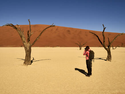 Woman taking a picture of one of the trees surrounded by dunes at Deadvlei, Namibia. - VEGF02092