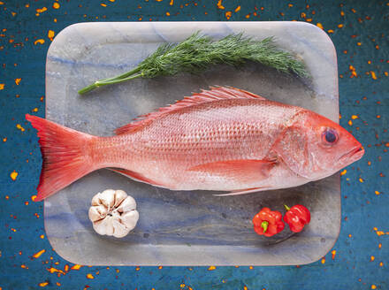 Tray with raw red snapper - AMUF00103