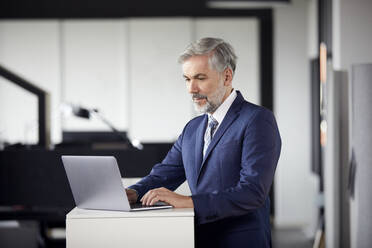 Mature businessman using laptop in office - RBF07662
