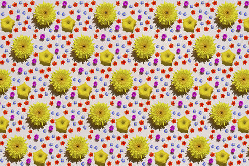 Pattern of colorful flower heads - GEMF03651