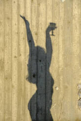 Shadow of dancing teenage girl with glass of wine - LBF03054