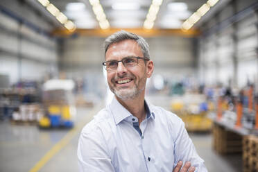 Portrait of a happy mature businessman in a factory - DIGF10640