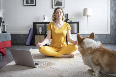 Woman with dog practising yoga in living room at home - VPIF02475