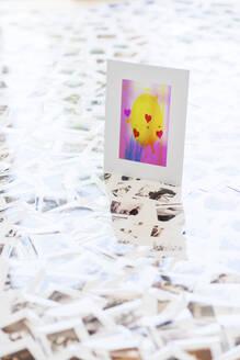 Greeting card standing on photographic slides strewn across floor - SKAF00142