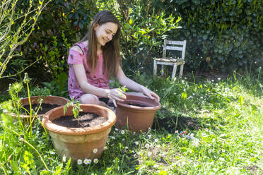 Smiling girl potting tomato plants in a garden - SARF04585