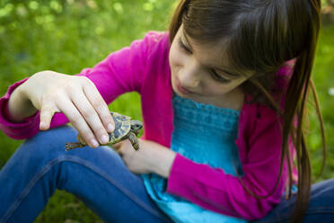 Girl sitting on a meadow holding small tortoise - LVF08901