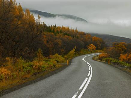 Winding road at Hallormsstaðaskógur forest in east Iceland - CAVF82782