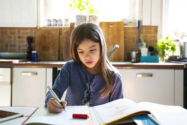 Girl doing homework in kitchen at home - LVF08915